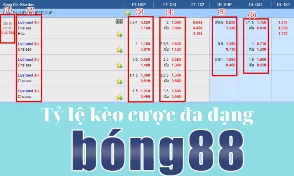 Tỷ lệ kèo cược đa dạng tại Bong88