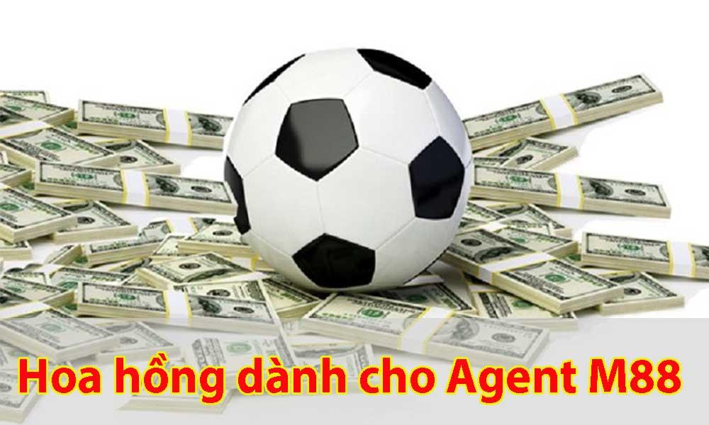 Hoa hồng - Tiền của Agent